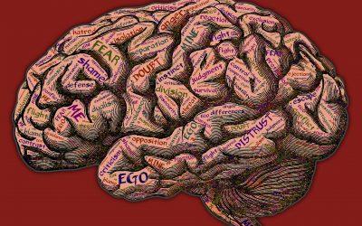 De werking van je hersenen bij stress
